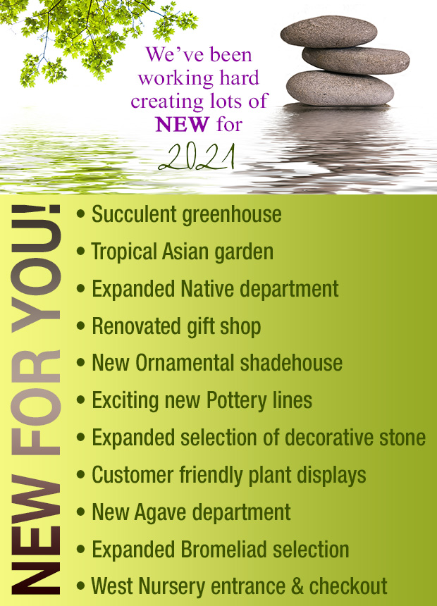 We've been working hard Creating Lots Of NEW for 2021 !! New Succulent Greenhouse New Tropical Asian Garden Expanded Native Department Renovated gift shop New Ornamental Shadehouse New pottery lines Expanded Selection of Decorative Stone New customer friendly plant displays New Agave Dept Expanded Bromeliad selection New West Nursery Entrance & Checkout
