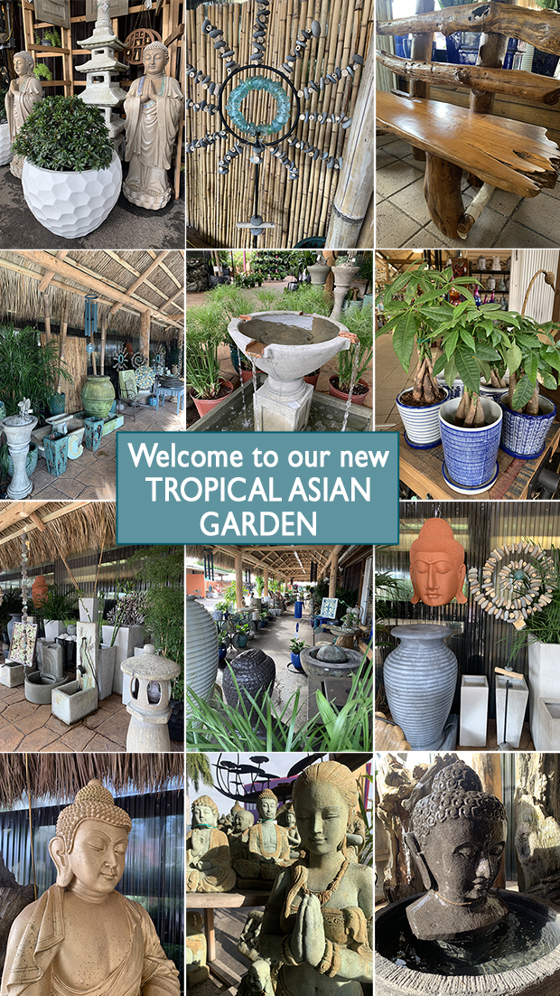 Welcome to our new Tropical Asian Garden, it's beautiful and calm, just waht you need during crazy times!