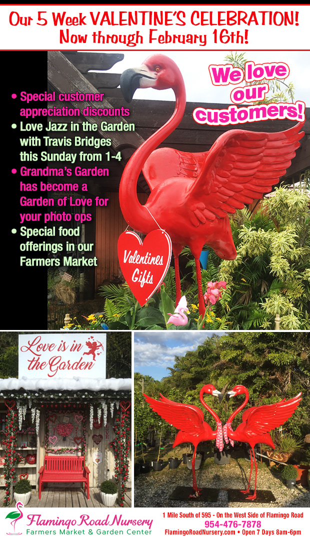 Valentine Celebration now until Feb. 16th. Live Jazz every Sunday, 1-4, special food offerings in our Farmers Market and Great Photo Ops!