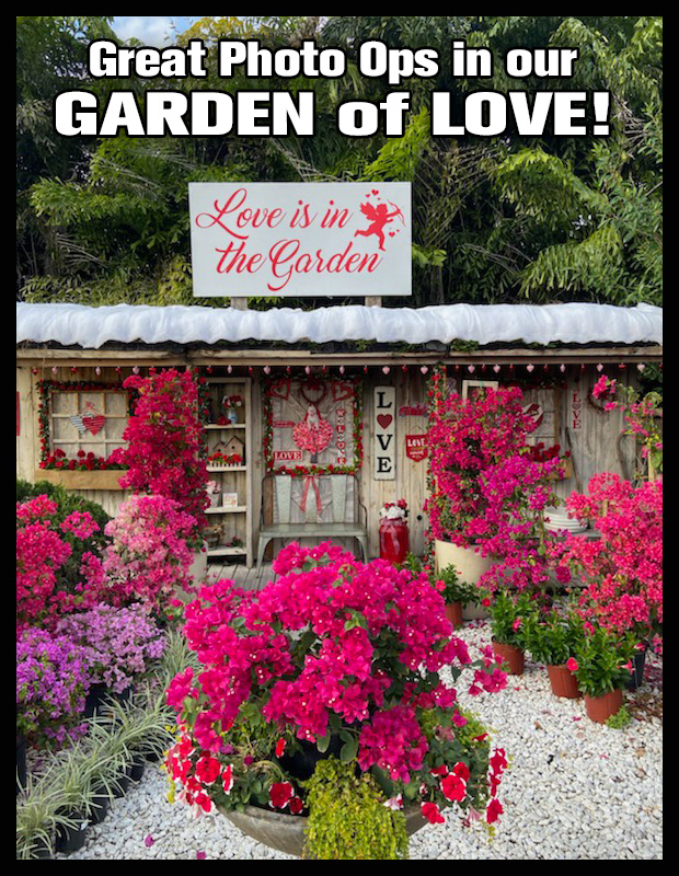 Great Photo Ops in our Garden of Love!