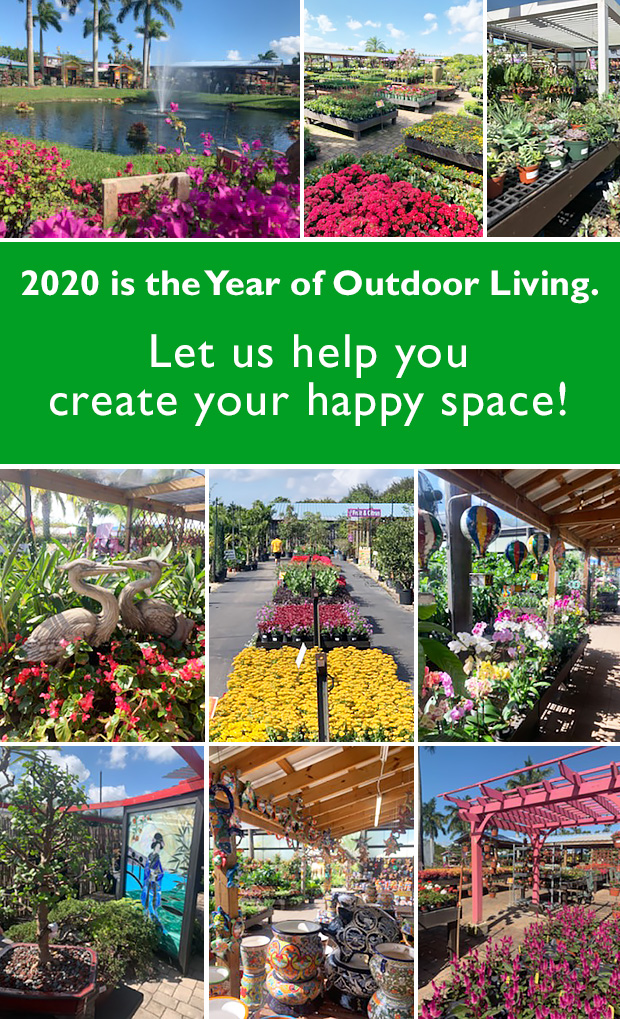 2020 is the year of outdoor living! Let us help you create your happy space!