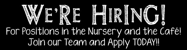 WE ARE HIRING for positions in the Nursery and the Cafe. Join our team and apply today!