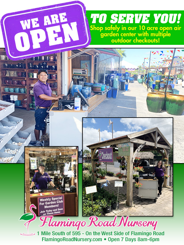 We are OPEN and we have plenty of outdoor checkouts at our 10 acre nursery to serve you safely and comfortably. Flamingo Road Nursery, 1655 S Flamingo Rd, Davie