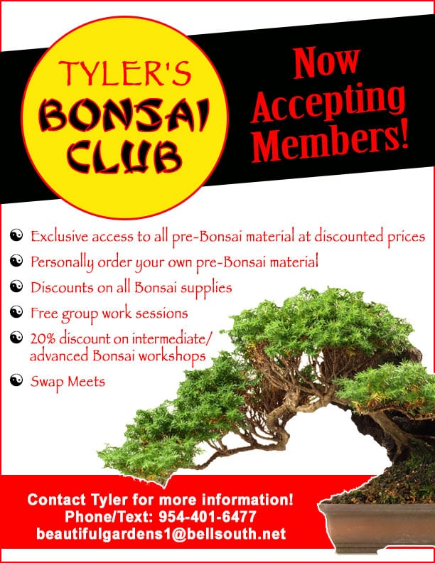 Join the Bonsai Club today for great perks