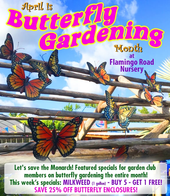 It's Butterfly Gardening Month at Flamingo Road Nursery! Garden Club Specials Galore!