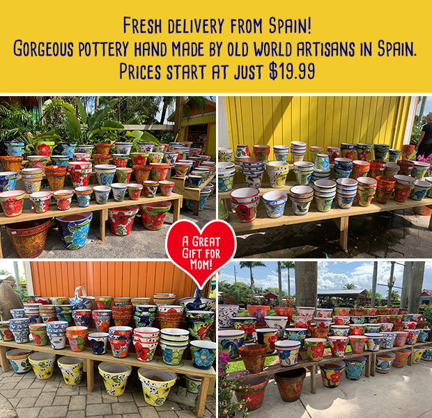 Fresh delivery from Spain! Gorgeous pottery hand made by old world artisan in Spain.  Prices start at just $19.99