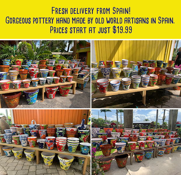 Spanish Pottery - fresh delivery from Spain starting at just $19.99