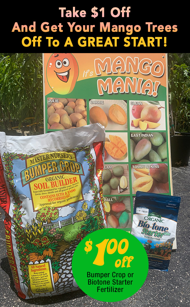 Give your Mango trees a great start with $1.00 OFF on Bumper Crop and Biotone Starter Fertilizer.