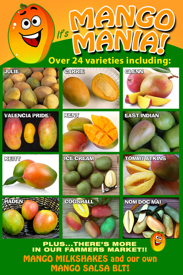It's MANGO MANIA! We have over 24 varieties for you to choose.