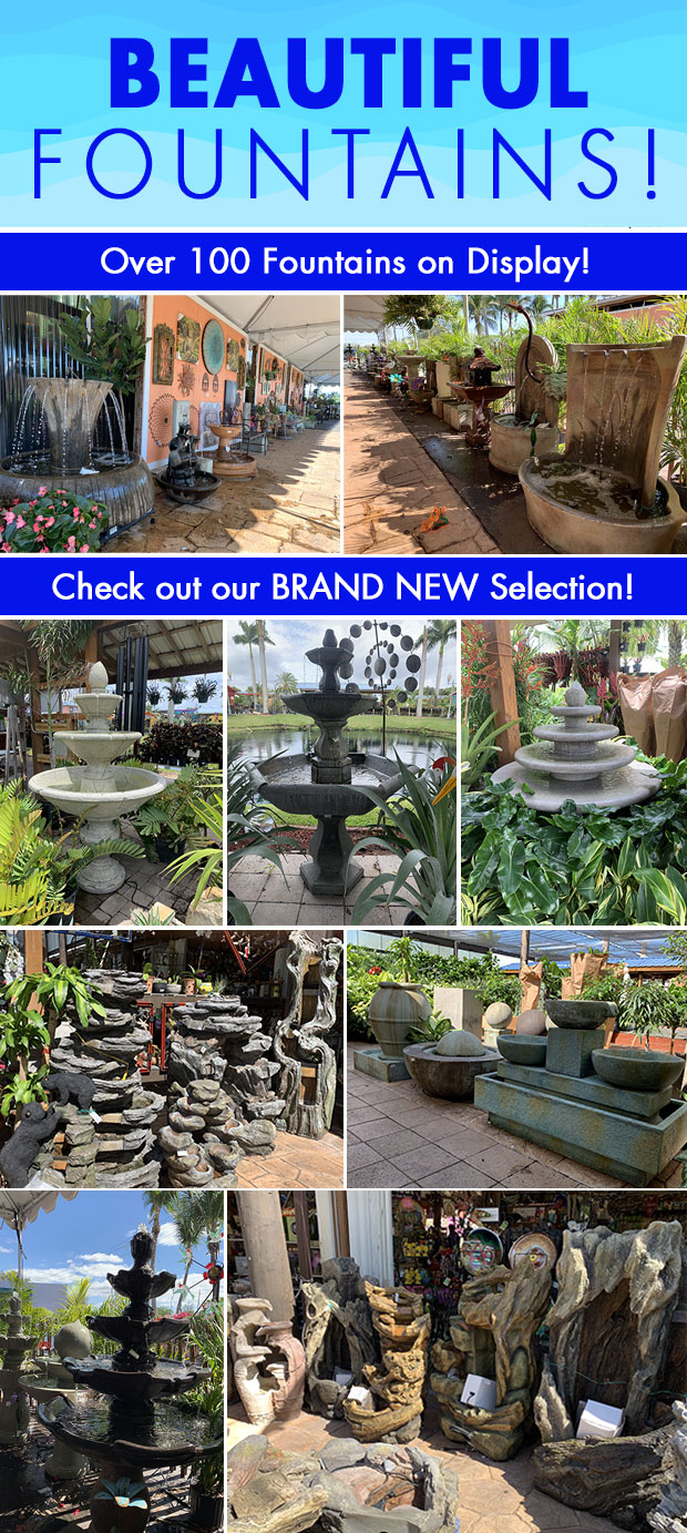 Check out our brand new selection of fountains! Over 100 on display.