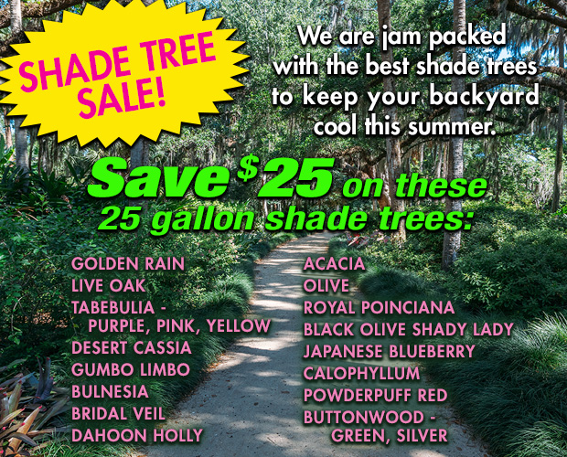 Save $25 on 25 gallon shade trees, many varieties in stock.