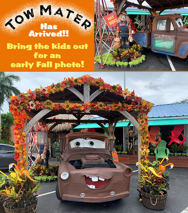 Tow Mater has arrived! Bring the kids in for a great Fall photo op!