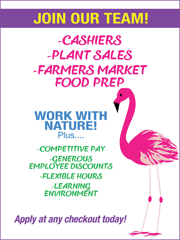 Now Hiring! Cashiers, Plant Sales, Farmers Market Food Prep. Work with Nature! Competitive pay, Generous employee discounts, Flexible hours, Learning enrichment. Apply at any cashier today!
