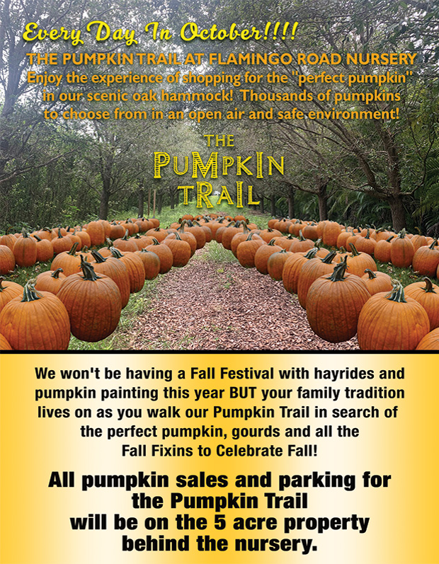 There will not be hayrides or pumpkin painting this year, but we've got you covered! Enjoy your family tradition at Flamingo Road Nurd=sery as you walk our pumpkin trail in search of the perfect pumpkin, gourds and all the Fall Fixins to celebrate Fall! All pumpkin sales and parking for the pumpkin trail will be on the 5 acre property behind the nursery.
