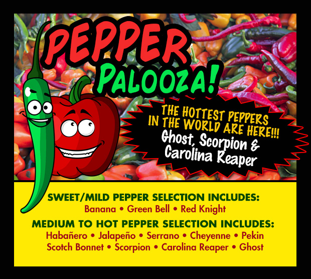 Pepper Palooza! We have the hottest peppers in stock - Ghost, Scorpion and Carolina Reaper. We also have an abundance of sweet, medium and other hot peppers!