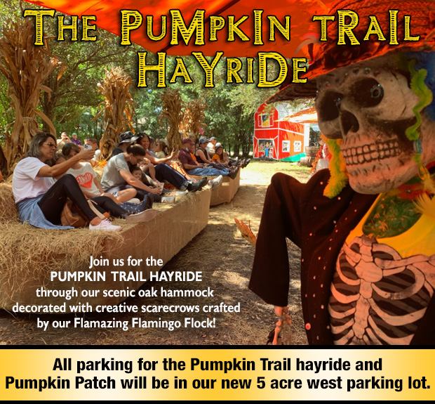 Join us for our fantastic Pumpkin Trail Hayride with scarecrows decorated by our own Flamazing Flamingo Flock!
