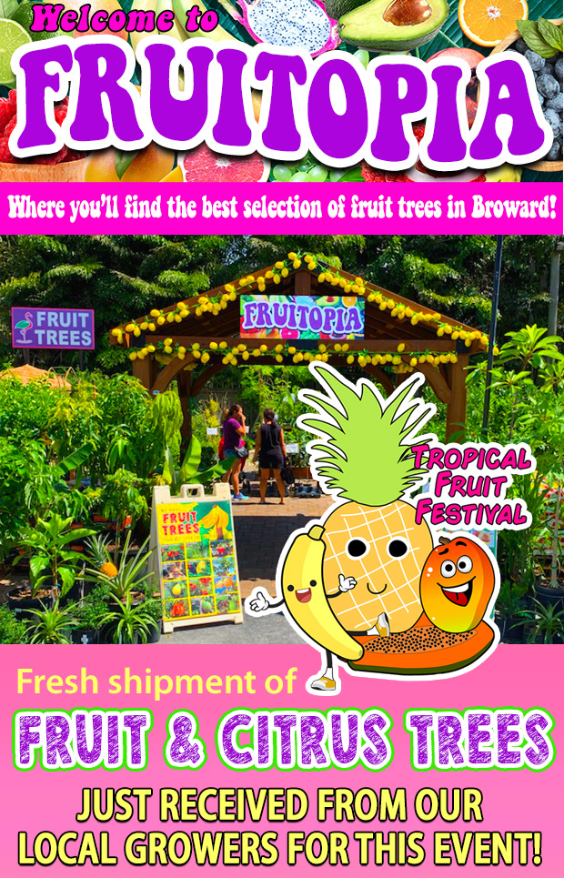 It's Tropical Fruit Festival at the Fall Fest! Fresh shipment of fruit trees arriving daily!