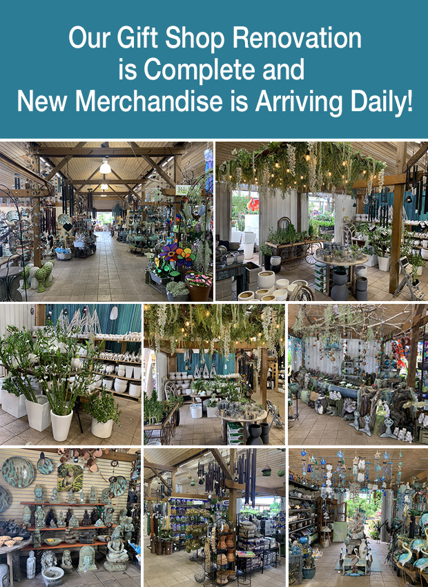 Our Gift Shop renovation is finished and looks GORGEOUS!! New merchandise is arriving daily.