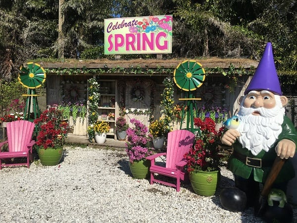 At Flamingo Road Nursery Our Easter Bunny Roams The Garden Center Giving Away Candy And Posing For Photos Your Child Will Enjoy Coconut Painting